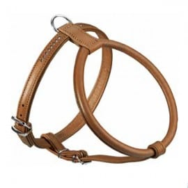 Large-Sized Brown Harness