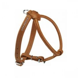 Small-Sized Brown Harness