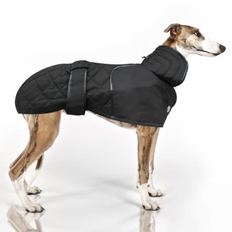 Manteau Spécial Lévrier Doudoune pour Whippet
