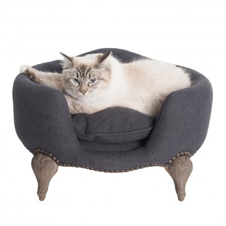 Canapé Ancien pour Chien ou Chat